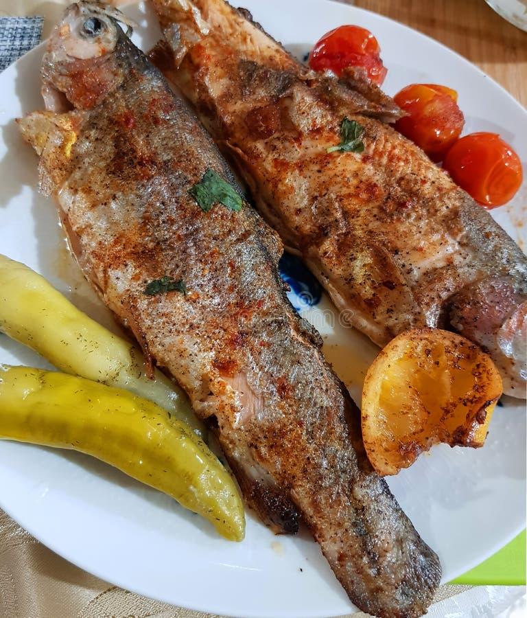 Den grillade fisken tjänade som med vitt exponeringsglas av vitt vin gourmet- skaldjur royaltyfria foton