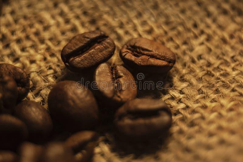 Den grillade kaffebönan ligger på säckväv, brunt arkivfoto