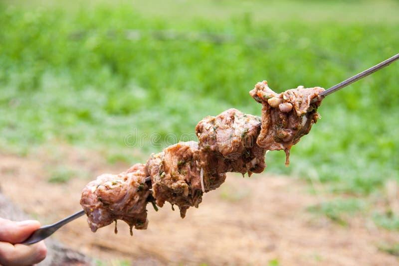 Den grillade kebaben på en steknål rymmer naturen fotografering för bildbyråer