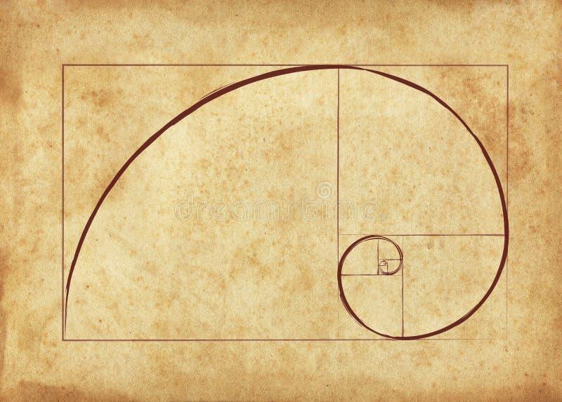 Den guld- Fibonacci spiralen arkivfoton