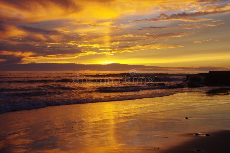 Den guld- solnedgången reflekterad i moln och blöter sand, Stilla havet nära San Diego, CA royaltyfria foton