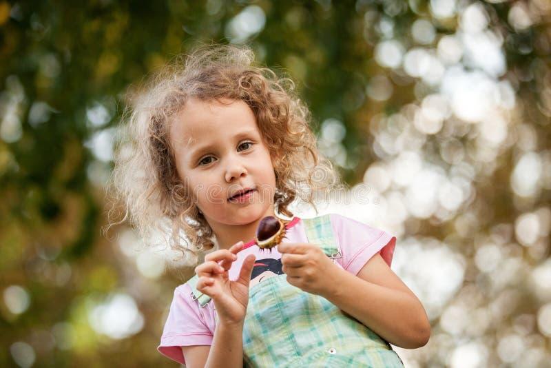 Den gulliga blonda flickan spelar med chesnut parkerar in, färgrika höstsidor i bakgrund, den gladlynta ungen, utomhus-, lyckligt royaltyfria bilder