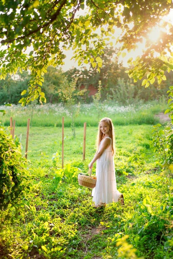 Den gulliga le lilla flickan rymmer korgen med frukt och grönsaker arkivbilder