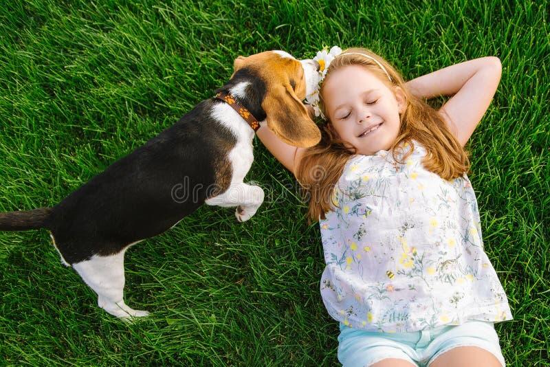 Den gulliga lilla flickan spelar med hennes hund i gräsplanen parkerar royaltyfri fotografi