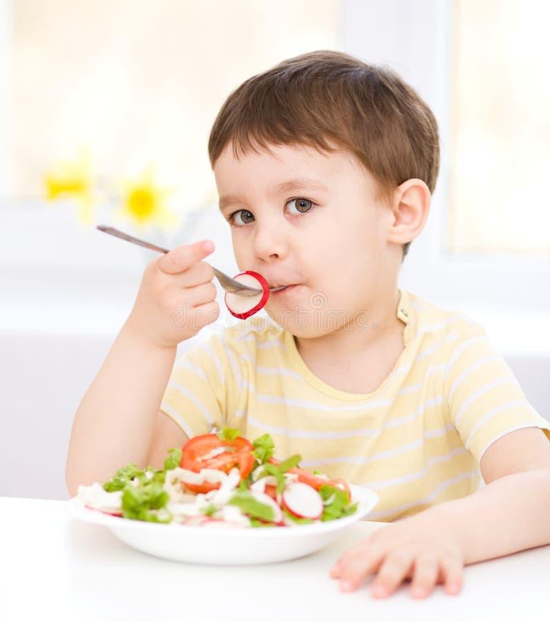 Den gulliga pysen äter grönsaksallad arkivfoto