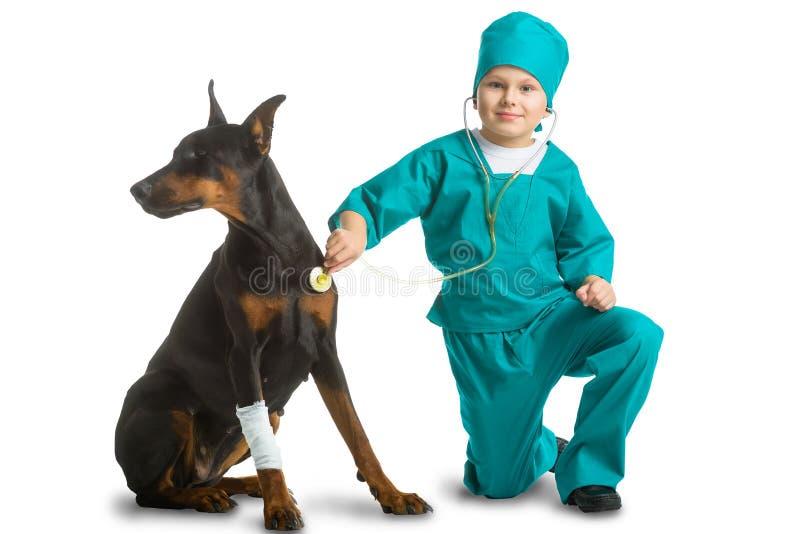 Den gulliga pysen klädde som doktorn behandlad hund eller arkivfoto