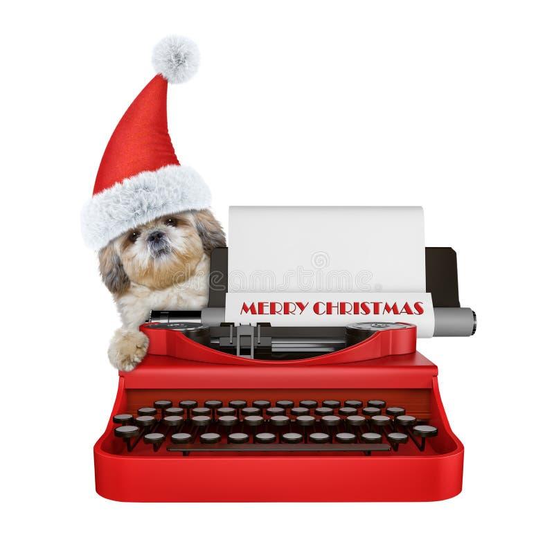 Den gulliga santa shitzuhunden skriver på ett skrivmaskinstangentbord Isolerat på vit arkivfoto