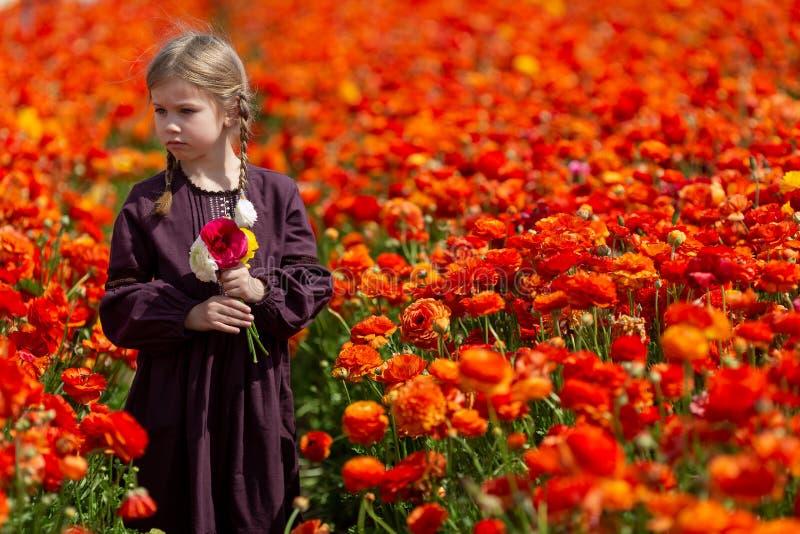 Den gulliga underbara ungebarnflickan går i en blomma våräng arkivbilder