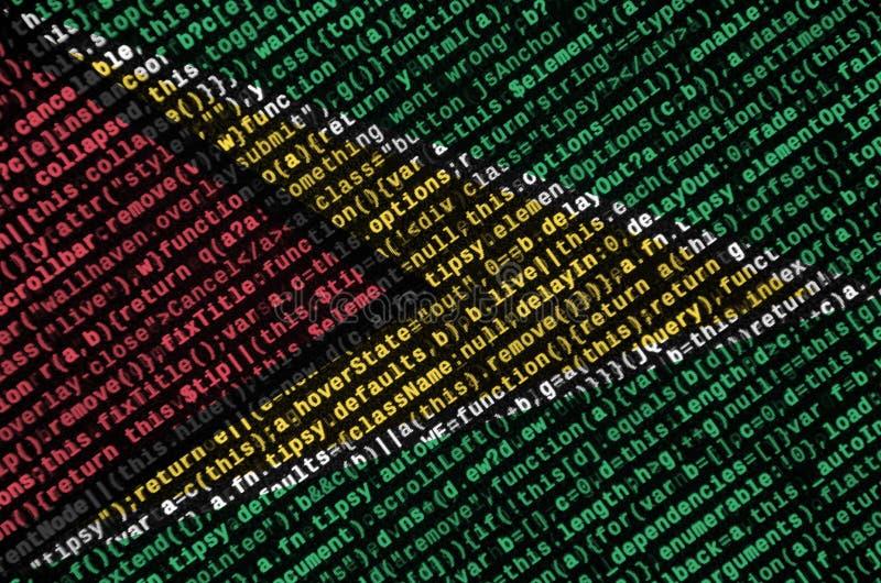 Den Guyana flaggan visas på skärmen med programkoden Begreppet av modern teknologi- och platsutveckling royaltyfria bilder