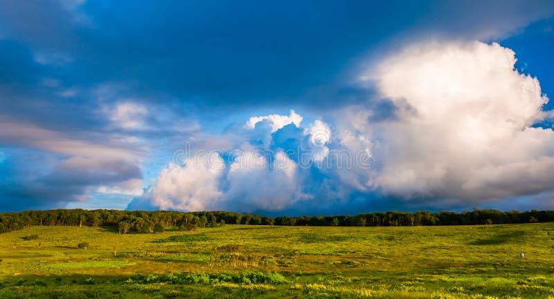 Den härliga aftonen fördunklar över stora ängar i den Shenandoah nationalparken royaltyfria foton