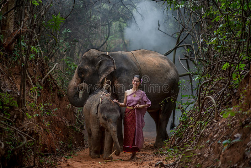 Den härliga asiatiska kvinnan bär den thai klänningen med hennes elefant, elepha royaltyfri fotografi