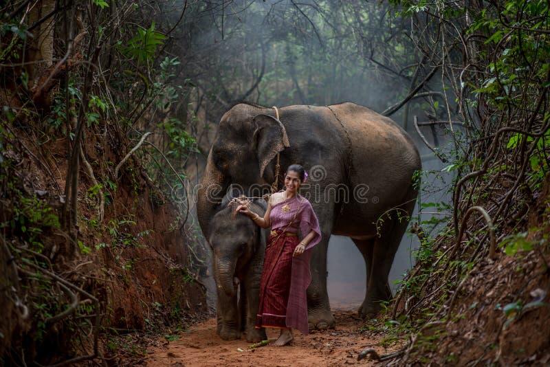 Den härliga asiatiska kvinnan bär den thai klänningen med hennes elefant, elepha fotografering för bildbyråer