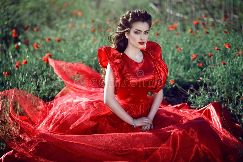 Den härliga blåögda unga damen med perfekt utgör och frisyren som bär den lyxiga siden- röda bollkappan som sitter i vallmofältet arkivbild