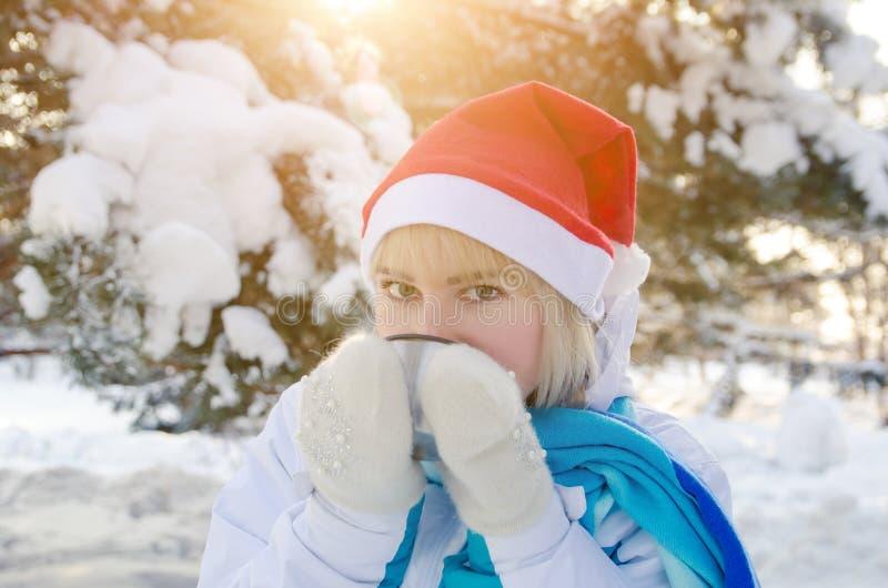 Den härliga blonda flickan i en röd julhatt dricker varmt te från en kopp fotografering för bildbyråer