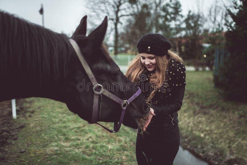 Den härliga blonda flickan matar från en hand en stor brun häst royaltyfri fotografi