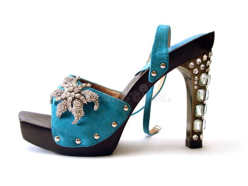 den härliga bluen shoes kvinnan royaltyfria foton