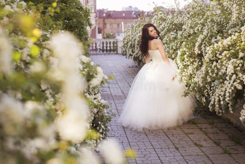Den härliga brunettkvinnabruden i en trädgård parkerar i vitt bröllop royaltyfri bild