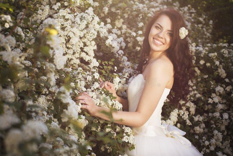 Den härliga brunettkvinnabruden i en trädgård parkerar i vitt bröllop royaltyfria foton