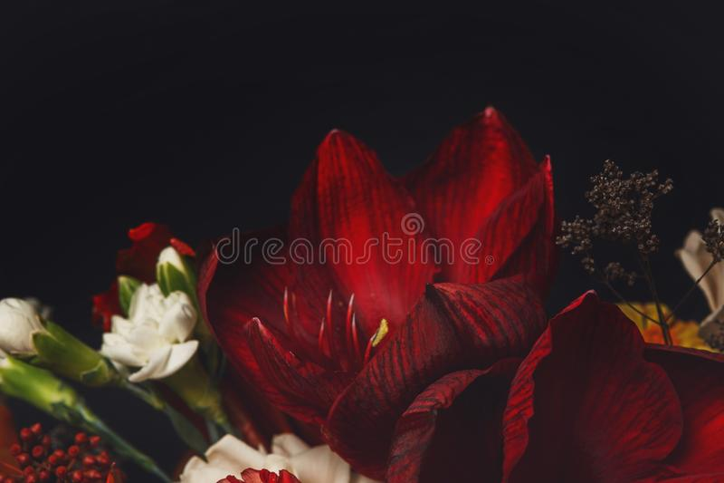 Den härliga bukettcloseupen, sammansättning av steg blommor och tjänstledigheter arkivbild