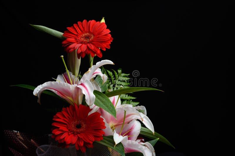 Den härliga buketten som gjordes från röd gerbera och vita liljor, satte till royaltyfria foton