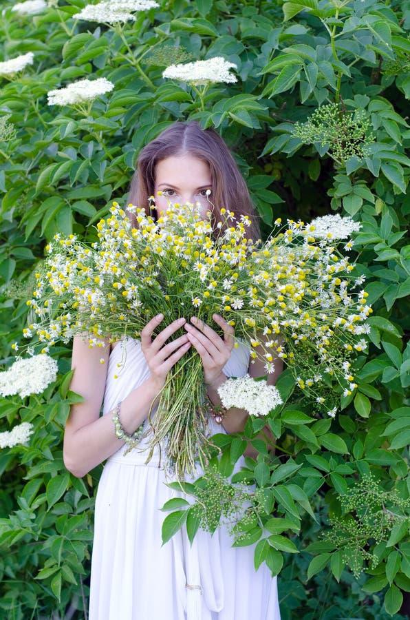 Den härliga damen i hållande bukett för vit klänning av kamomillen blommar arkivfoton
