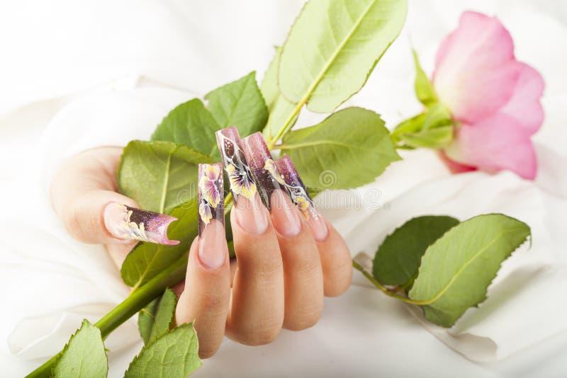 Den härliga fingernageln fotografering för bildbyråer