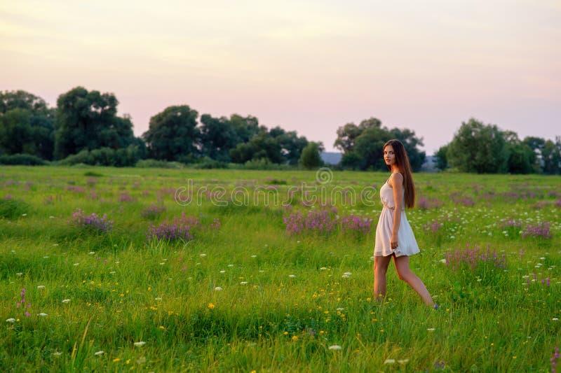 Den härliga flickan går på en sommaräng arkivbild