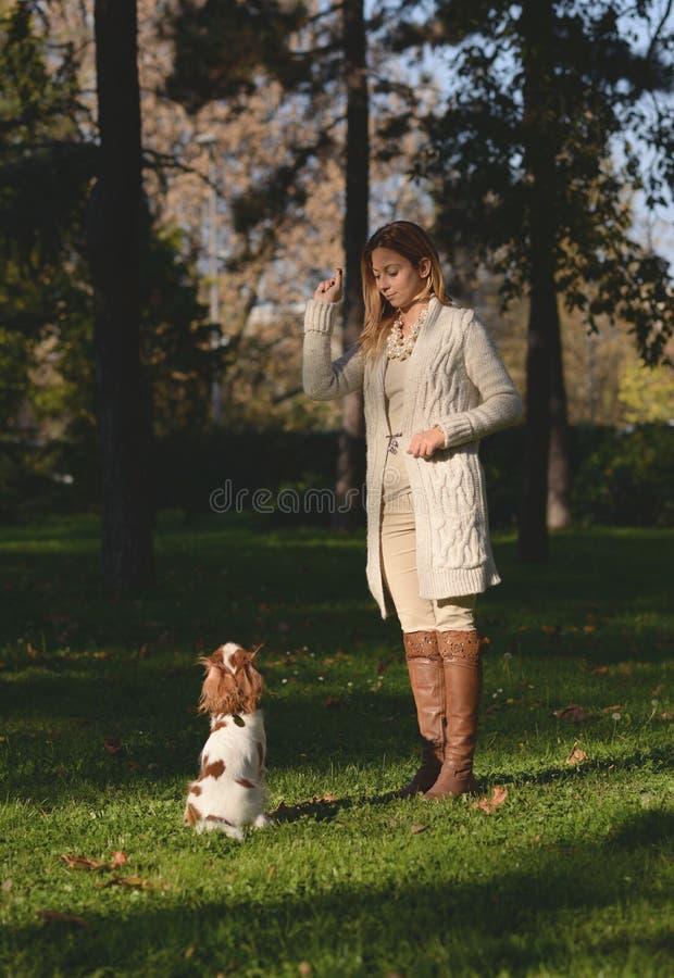 Den härliga flickan i parkera som gör lydnad, excersize med hennes stolta konung Charles Spaniel för hunden royaltyfri bild