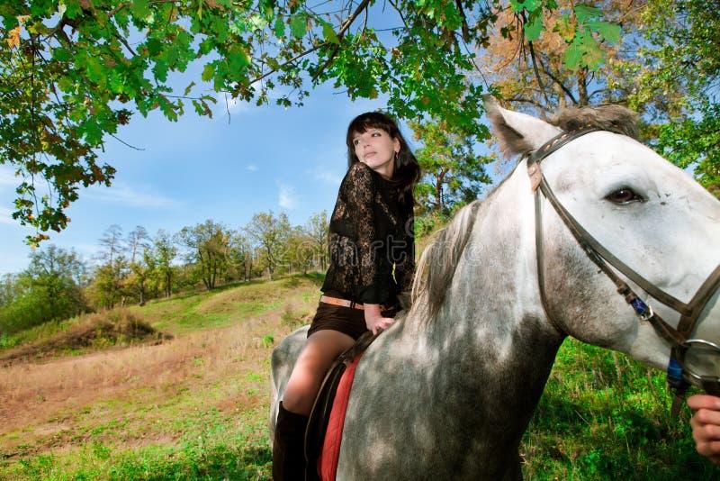 Den härliga flickan på häst går i skog royaltyfria bilder