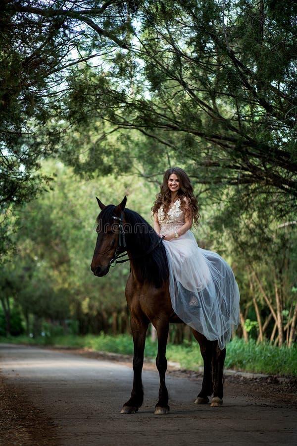 Den härliga flickan sitter på hästrygg i en smart klänning royaltyfri bild