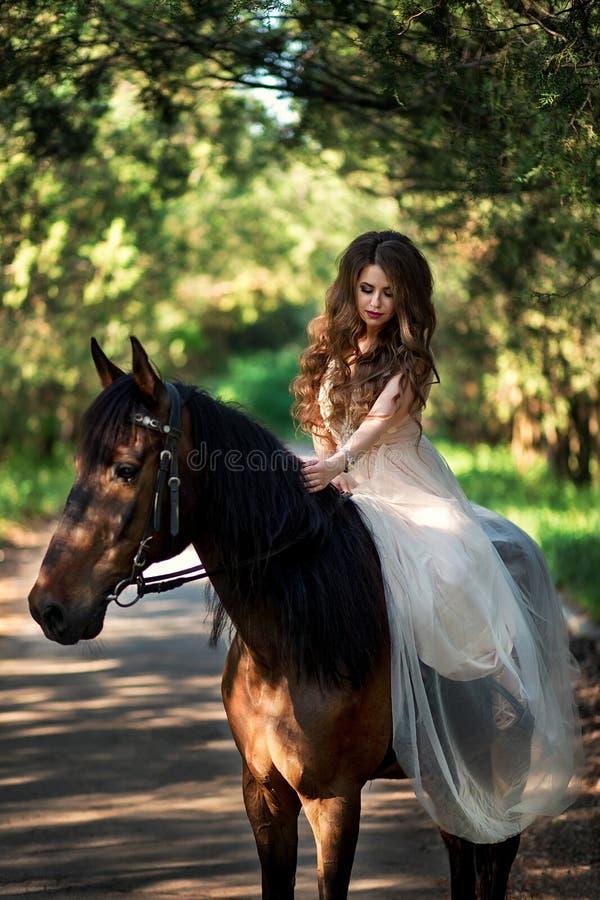 Den härliga flickan sitter på hästrygg i en smart klänning royaltyfri fotografi