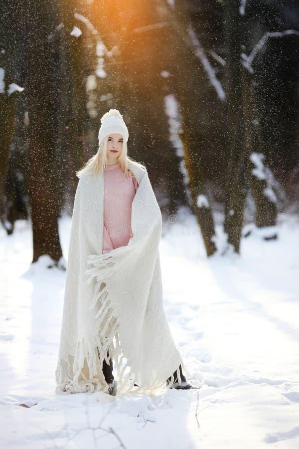 Den härliga flickan som går i vintern, parkerar royaltyfri foto