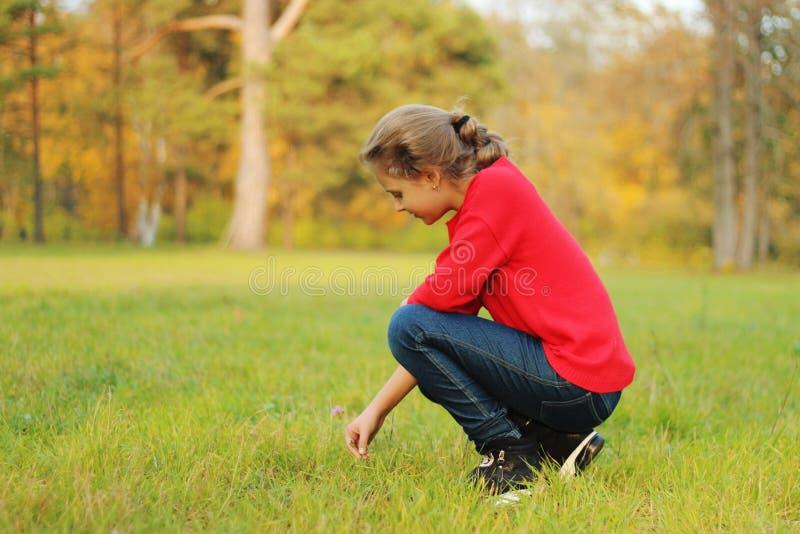 Den härliga flickan spelas i parkera arkivbilder