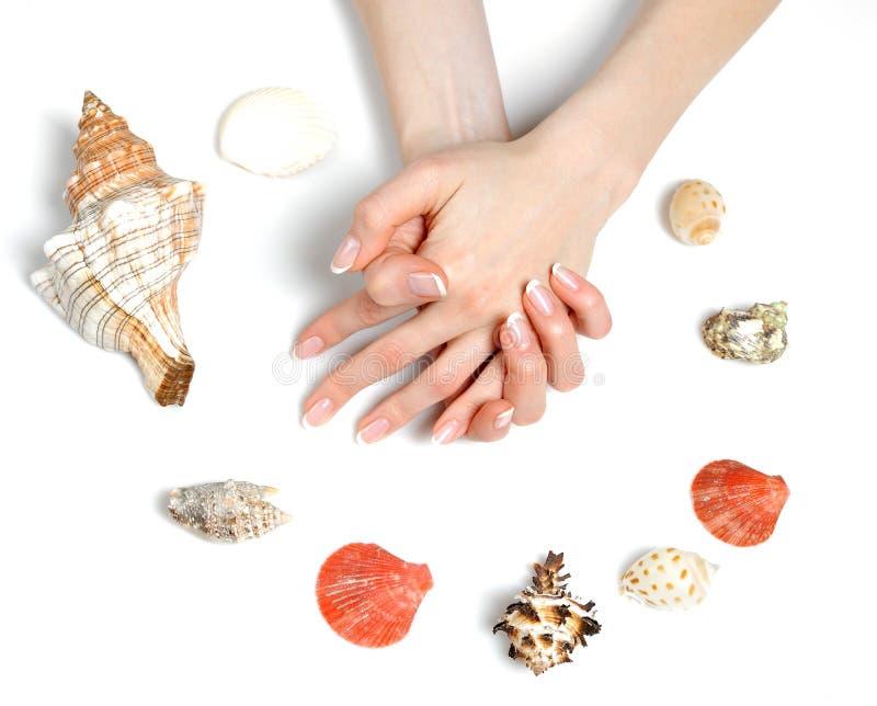den härliga fransmannen hands brunnsorten för manicurehavsskal royaltyfri bild
