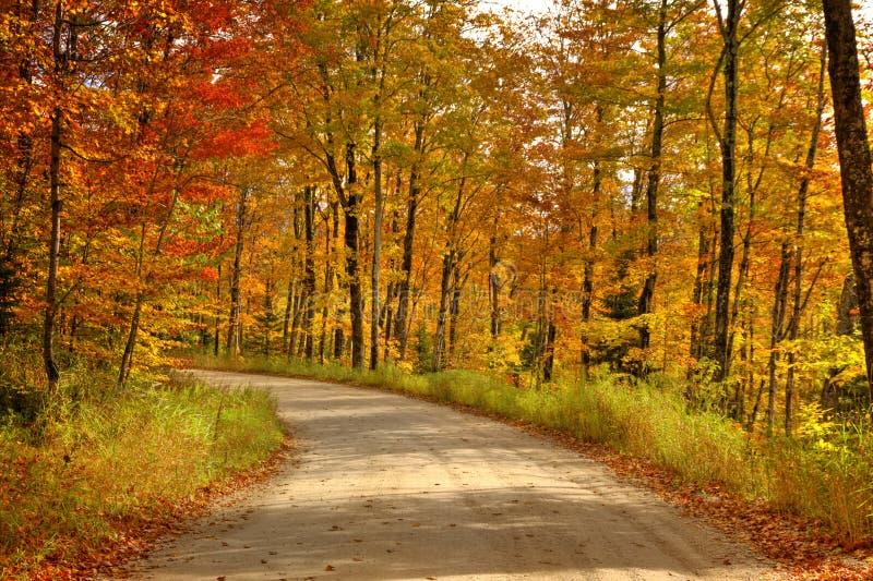 Den härliga gångbanan med nedgången färgar in i Michigan USA royaltyfria foton