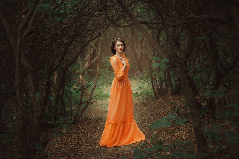 Den härliga grevinnan i en lång orange klänning royaltyfri foto