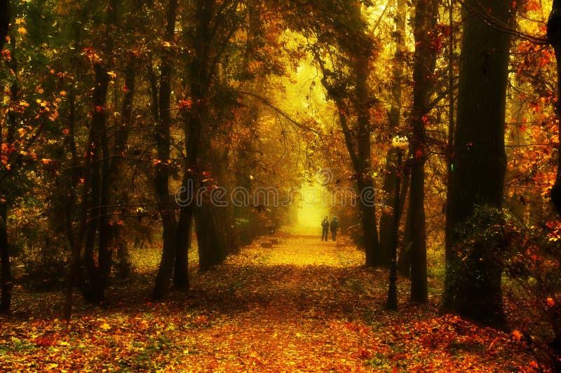 Den härliga hösten parkerar arkivfoto