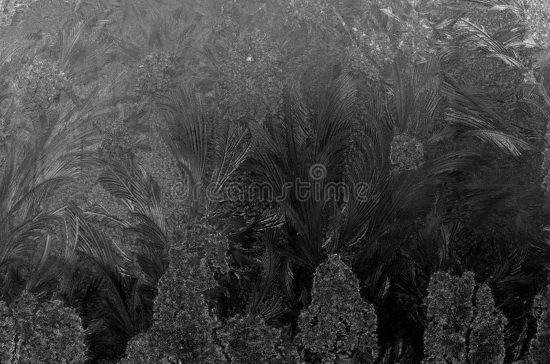 Den härliga isblomman formar och modeller på frost fryst fönster royaltyfri bild