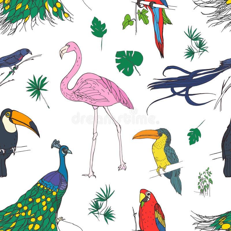 Den härliga kulöra sömlösa modellen med tropiska fåglar och exotiska sidor räcker utdraget på vit bakgrund Färgrik vektor stock illustrationer