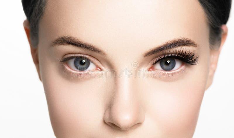 Den härliga kvinnaframsidan med ögonfrans piskar hud för skönhet för förlängningen före och efter sund som naturlig makeup stängd fotografering för bildbyråer