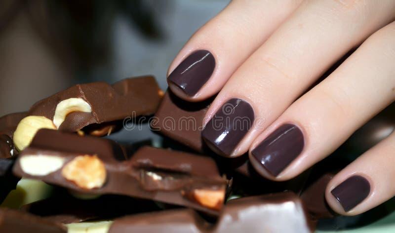 Den härliga kvinnahanden med stycken av mjölkar choklad fotografering för bildbyråer