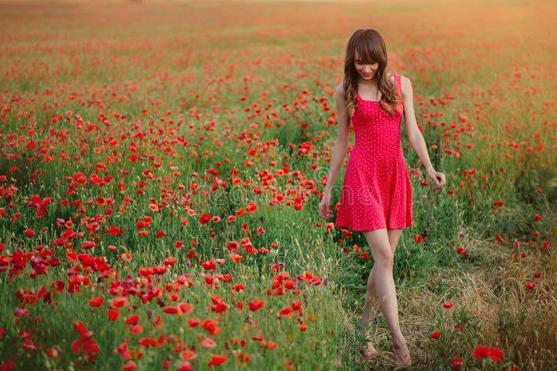 Den härliga kvinnan i en röd klänning i ett vallmofält på att gå för solnedgång går framåt varm toning, lycka och en sund livssti arkivbilder