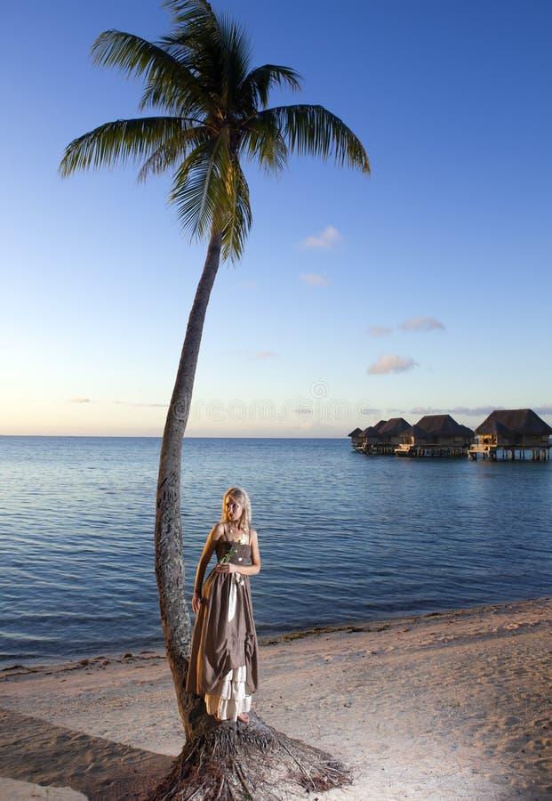 Den härliga kvinnan med en ros på en palmträd tahiti arkivbilder
