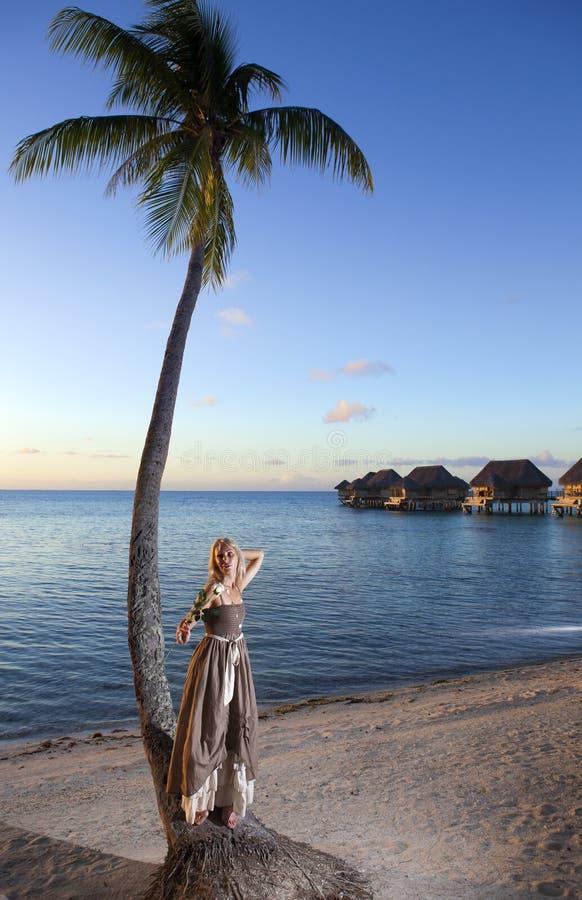 Den härliga kvinnan med en ros på en palmträd tahiti royaltyfri bild