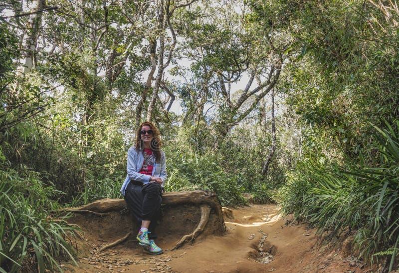 Den härliga kvinnan som sitter på, rotar i den tropiska skogen arkivbild