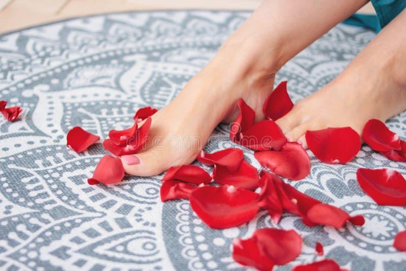 Den härliga kvinnlign garvade ben med den rosa pedikyren bland rosa kronblad, närbild arkivfoton