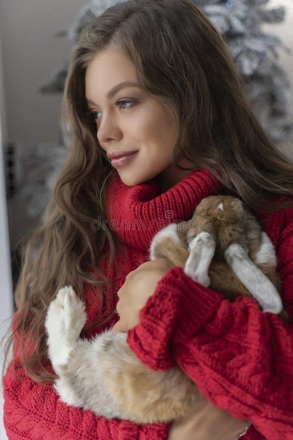 Den härliga långbenta unga flickan, den bärande röda tröjan och ullsockastag på fönstret och rymmer försiktigt en kanin i hennes  royaltyfri bild