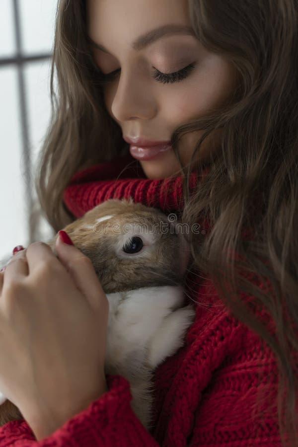 Den härliga långbenta unga flickan, den bärande röda tröjan och ullsockastag på fönstret och rymmer försiktigt en kanin i hennes  royaltyfria foton