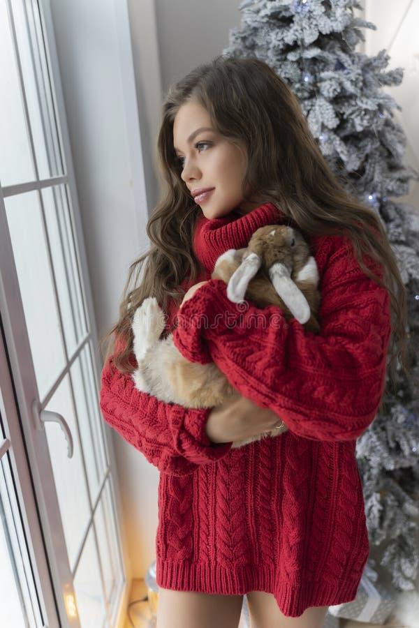 Den härliga långbenta unga flickan, den bärande röda tröjan och ullsockastag på fönstret och rymmer försiktigt en kanin i hennes  royaltyfri fotografi