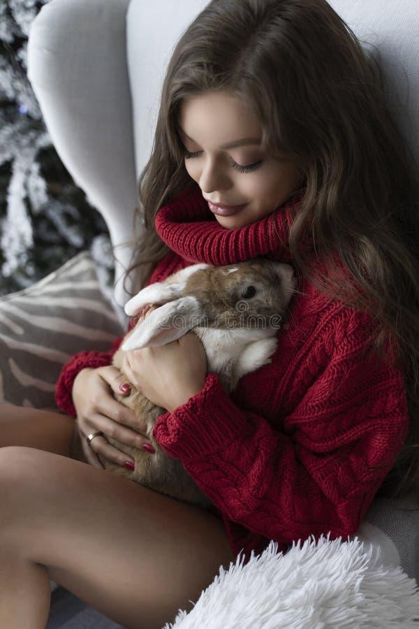 Den härliga långbenta unga flickan, den bärande röda tröjan och ullsockor sitter på fönstret och rymmer försiktigt en kanin i hen royaltyfri bild